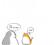 46화)고양이