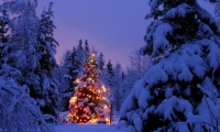 쿠플노블 12화 - 추운 크리스마스
